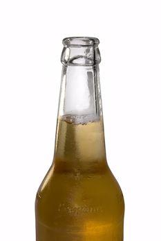 Bottle of beer on white