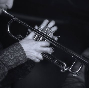 Trumpet player. Focus on the finger of the saxophone player. b/w+blue tone