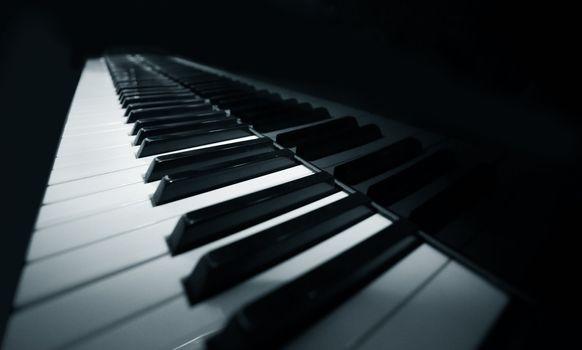 Grand piano ebony and ivory keys