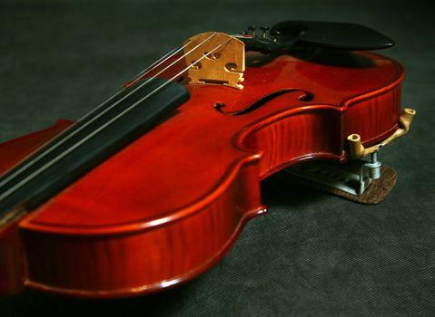 A violin over dark wood in sudio