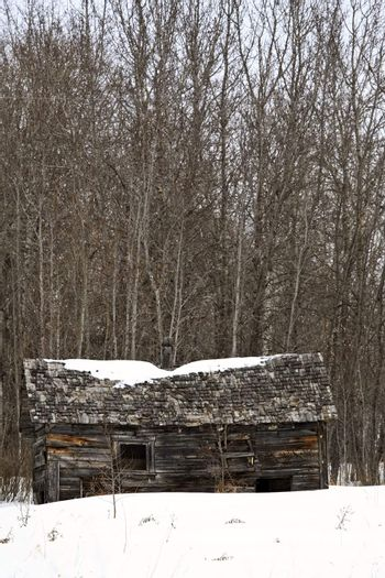 Abandoned pioneer house in winter