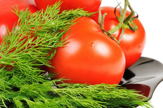 Tomatoes on a black plate with dill. Isolated on white.