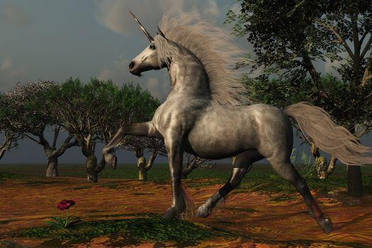 A beautiful male unicorn prances in a magical forest.