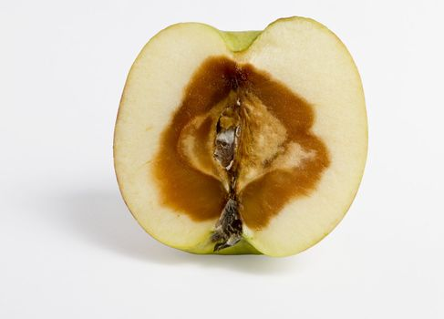 feculent apple - rotten from the center - grey background - with clipping path