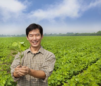 portrait of a asian farmer