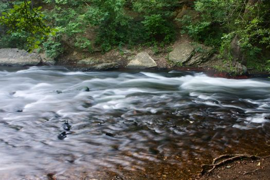 Silky Creek