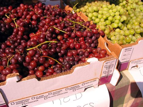 Some red and green grapes for sale at the farmers market.
