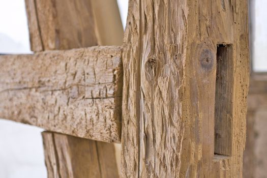old carcass with woodworm and nice depth of field
