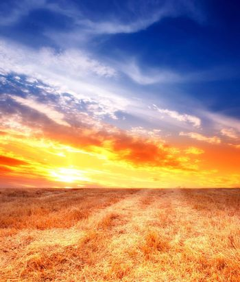 A panorama photo of Countryside sunset