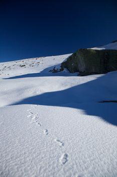 treads on snow slope