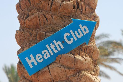 palm on the beach with a shield health club