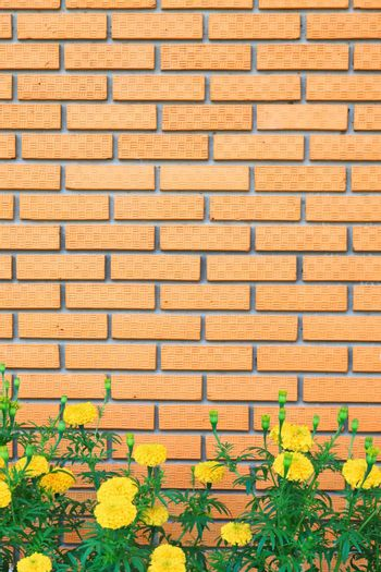 brick wall with yellow flower in the garden