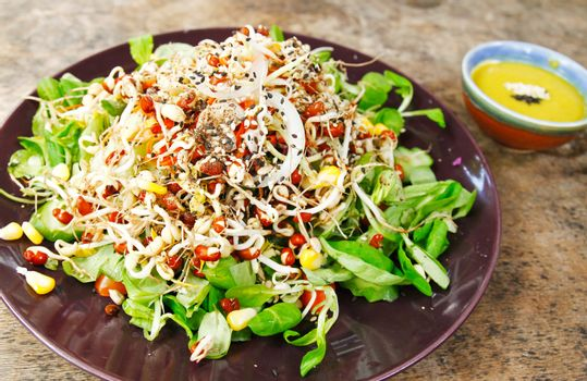 Fresh organic salad with cream sauce