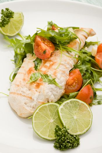 Grilled Chicken breast with salad
