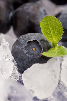 Blueberries on Ice