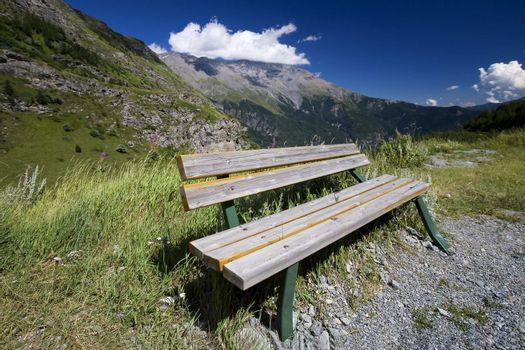 Bench on a hiking trail