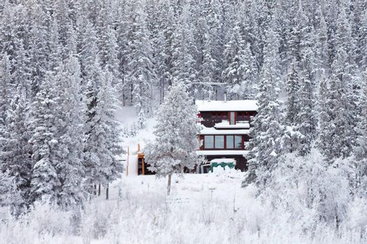 White Christmas winter house isolated in the woods between snow covered spruce trees.