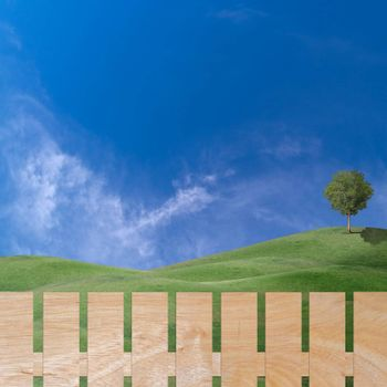 Beautiful field of green hill with wooden fence and lonely tree