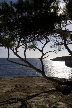 view in Cala pi Mallorca