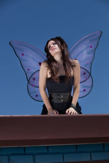 Faery Looks Out