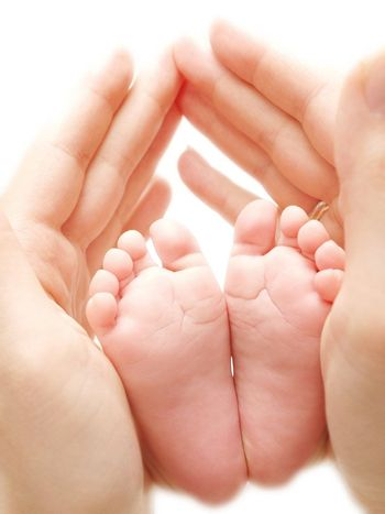 Babies feet between parent hands isolated towards white background