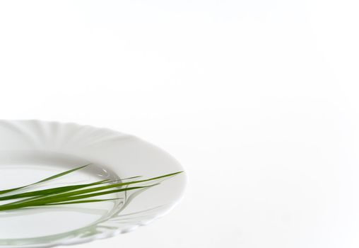Closeup of white plate with grass. Copy space. White background.