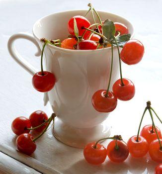 cherry in mug