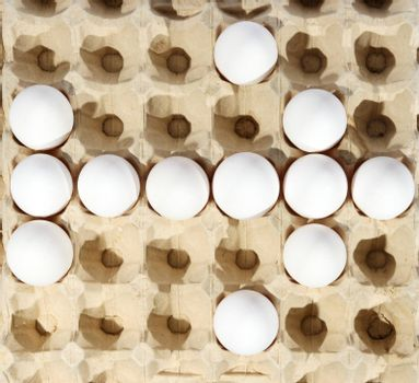 eggs in packing