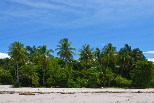 View of a Tropical beach in Manuel Antonio, Costa Rica.