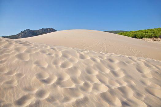 multiple dunes