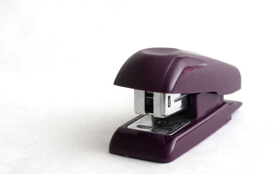 isolated shot of a small black stapler on white