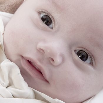 Asian baby portrait