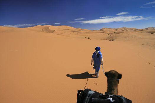 Vast desert camel adventure