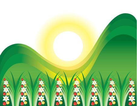 Abstract flowering grass in the sun. Illustration on white background