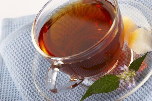 herbaceous tea - natural drug