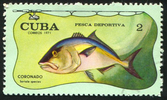 CUBA - CIRCA 1971: stamp printed by Cuba, shows fish, Seriola species, circa 1971