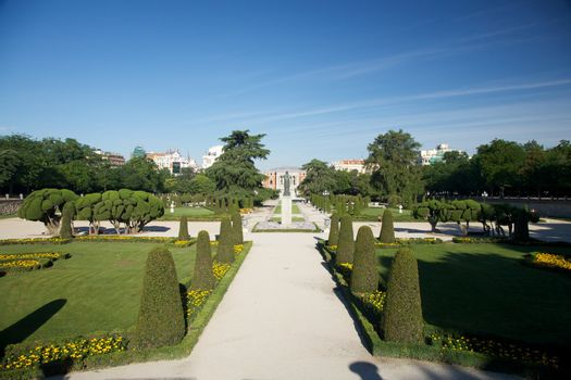 avenue park in Madrid