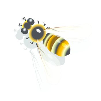 illustration, yellow striped bee on white background