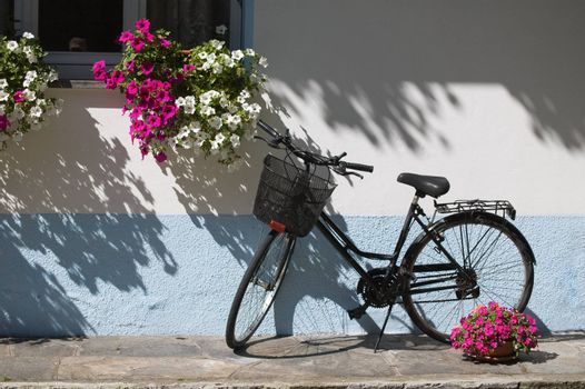 Bicycle near window with flowers