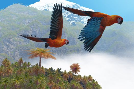 Two beautiful parrots fly together in their jungle paradise.