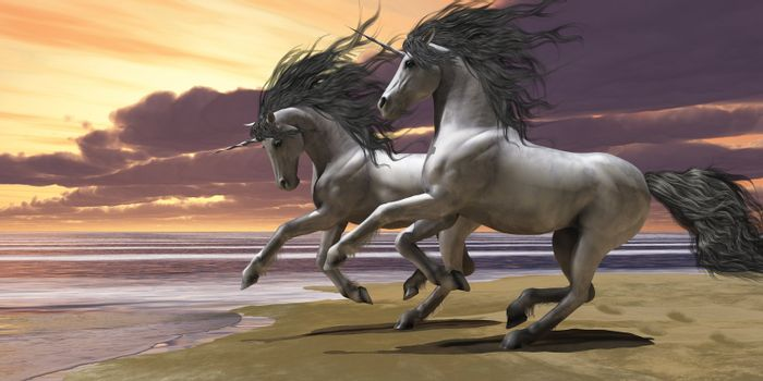 Two white unicorns prance and play near the ocean.