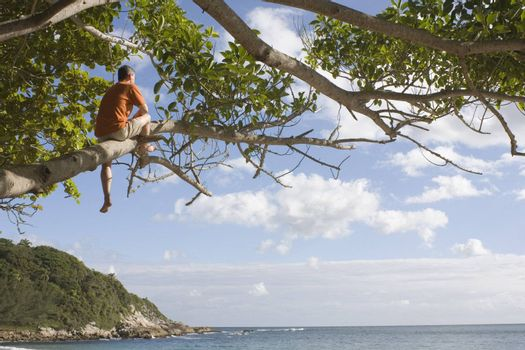 Man sitting in a tree contemplating the sea on a tropical beach