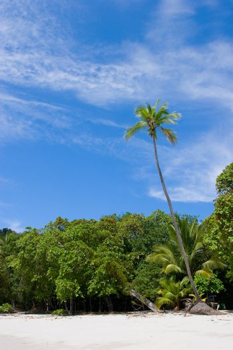 Beach view at Manuel Antonio National Park, Costa Rica.