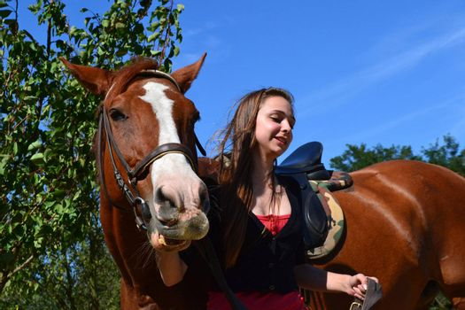 A young woman leading a brown horse at a horse farm.