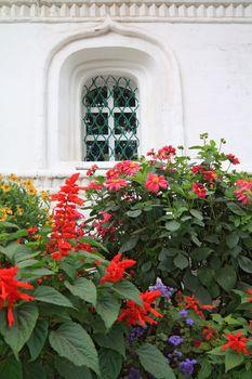 flowerses under window