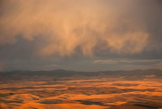 Rolling hills and distant mountains, Whitman County, Washington and Benewah County, Idaho, USA