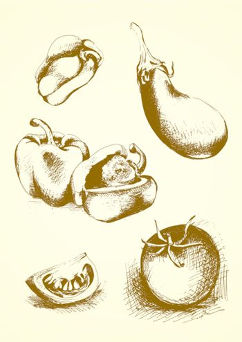 collection of hand drawn vegetables: peppers, tomato, eggplant