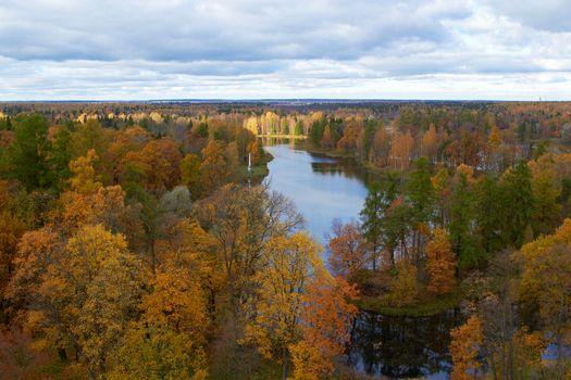 trees and lake. Gatchina park. St. Petersburg