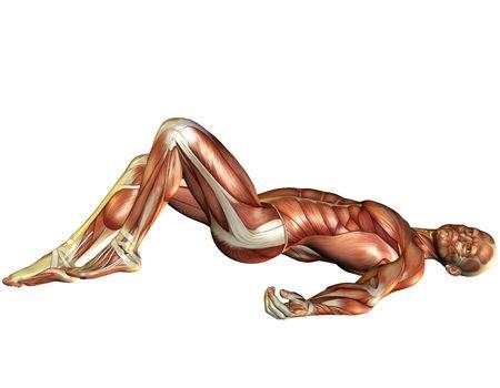 Muscle man lying