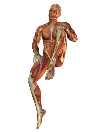 Muscle man in a sitting posture